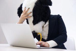 【キャッシュバック】エディオンでのソフトバンク光の契約はNG!量販店の中でも特に良くないキャンペーン内容です・・・