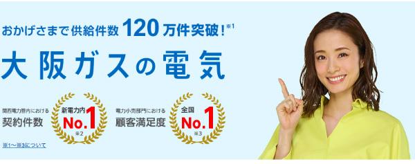 大阪ガス電気公式